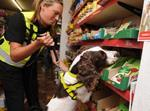 Sniffer dog illicit tobacco