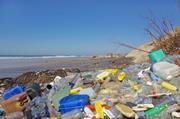Plastic bottles on beech (Thinkstock)
