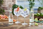 Gordon's gin and tonic drinks